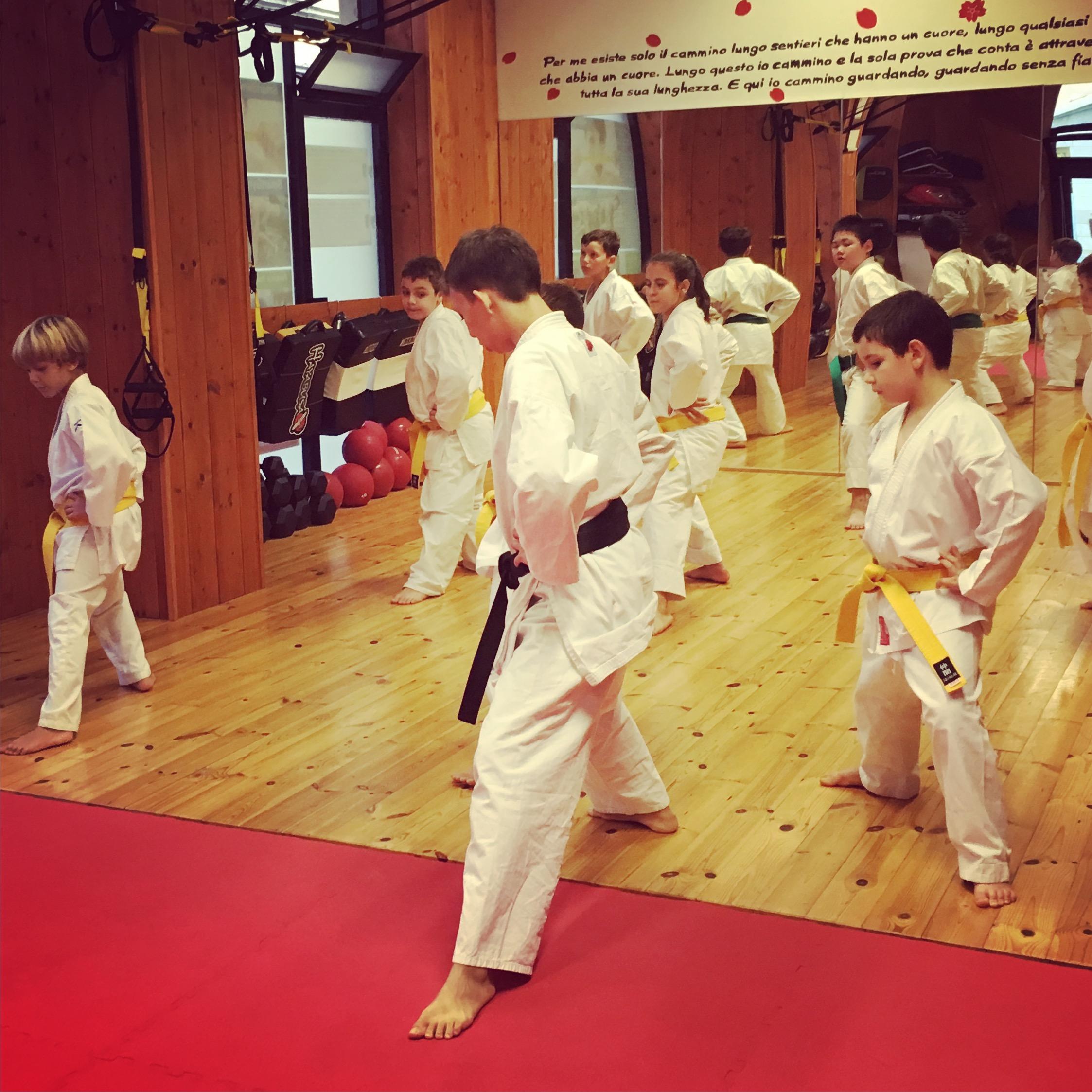 Karate bambinini disciplina